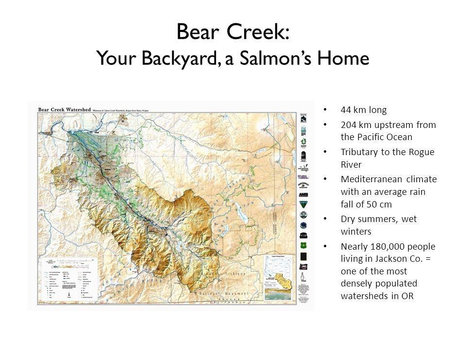 Bear Creek: Your Backyard, a Salmon's Home
