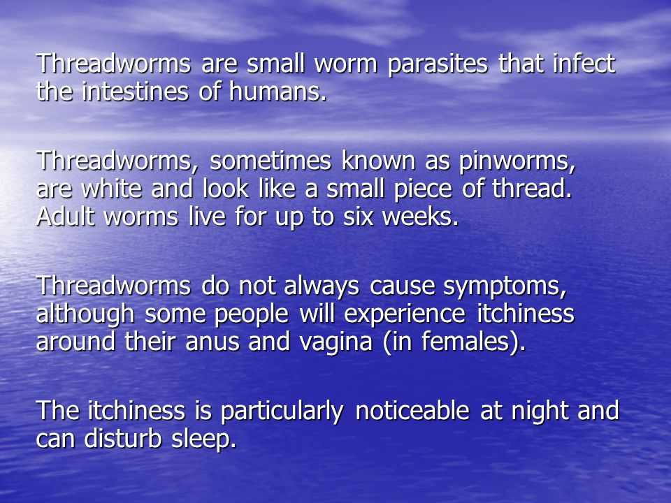 Threadworms are small worm parasites that infect the intestines of humans.