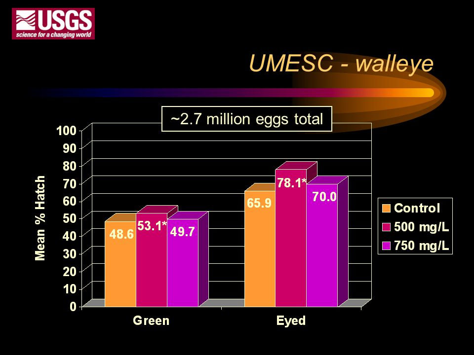 UMESC - walleye ~2.7 million eggs total Pivotal trial Replication