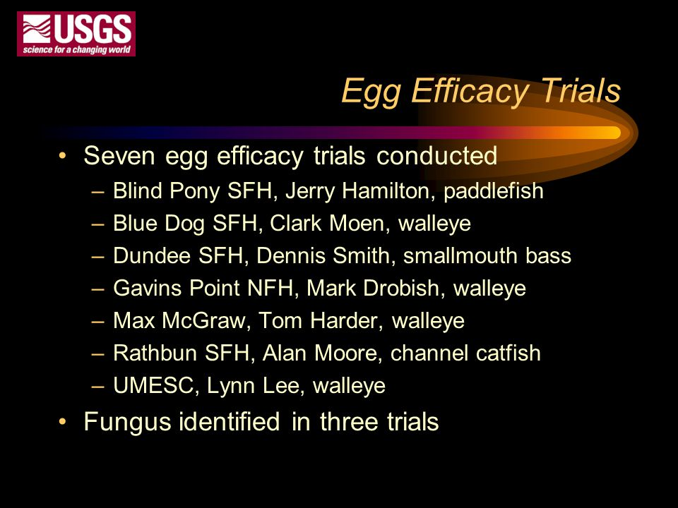 Egg Efficacy Trials Seven egg efficacy trials conducted