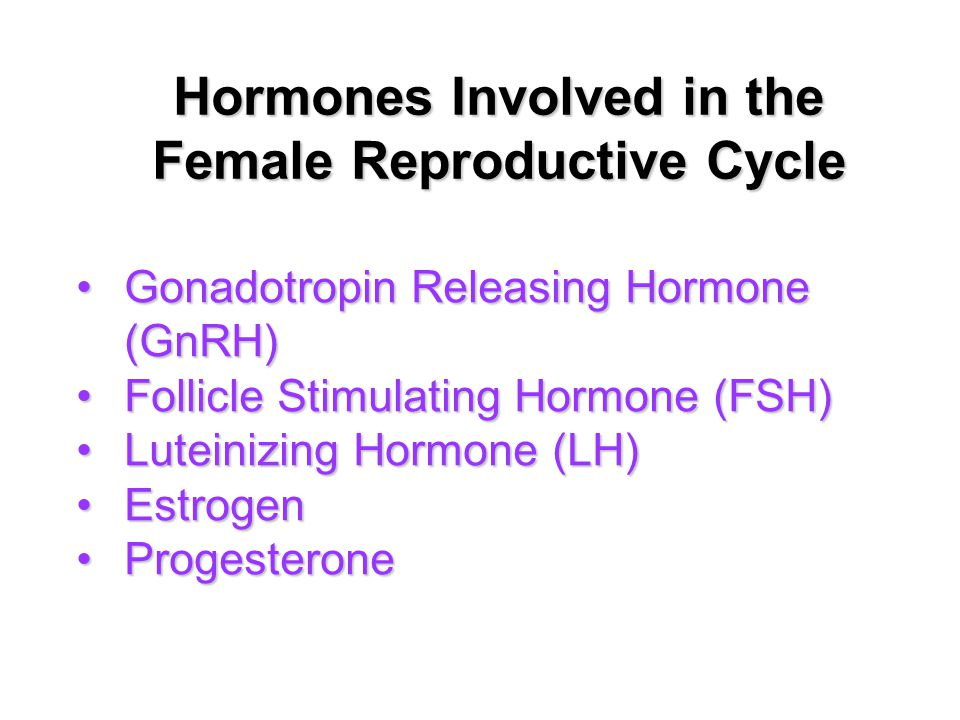 Hormones Involved in the Female Reproductive Cycle