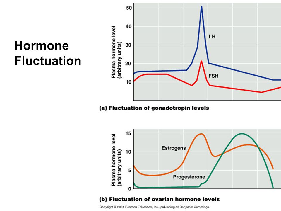 Hormone Fluctuation