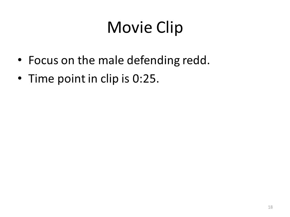 Movie Clip Focus on the male defending redd.