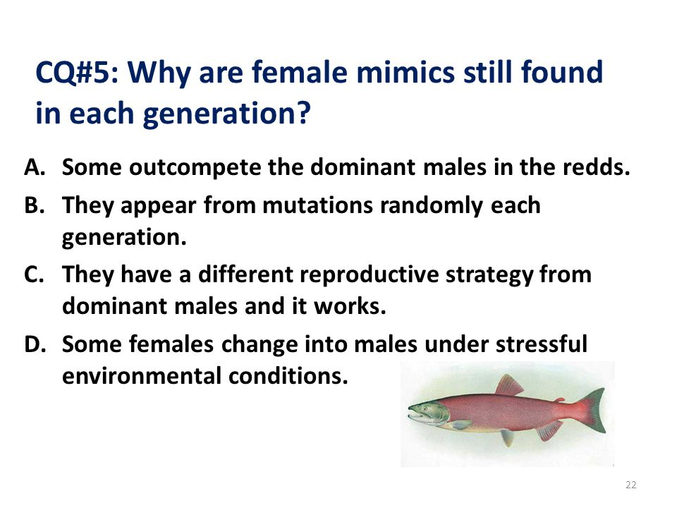 CQ#5: Why are female mimics still found in each generation