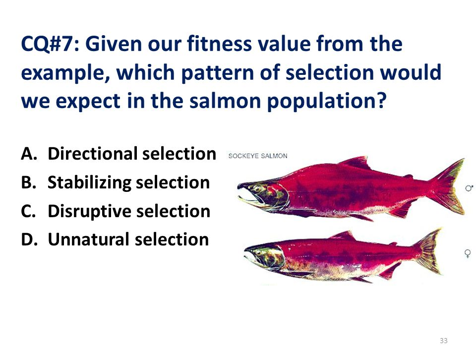 CQ#7: Given our fitness value from the example, which pattern of selection would we expect in the salmon population