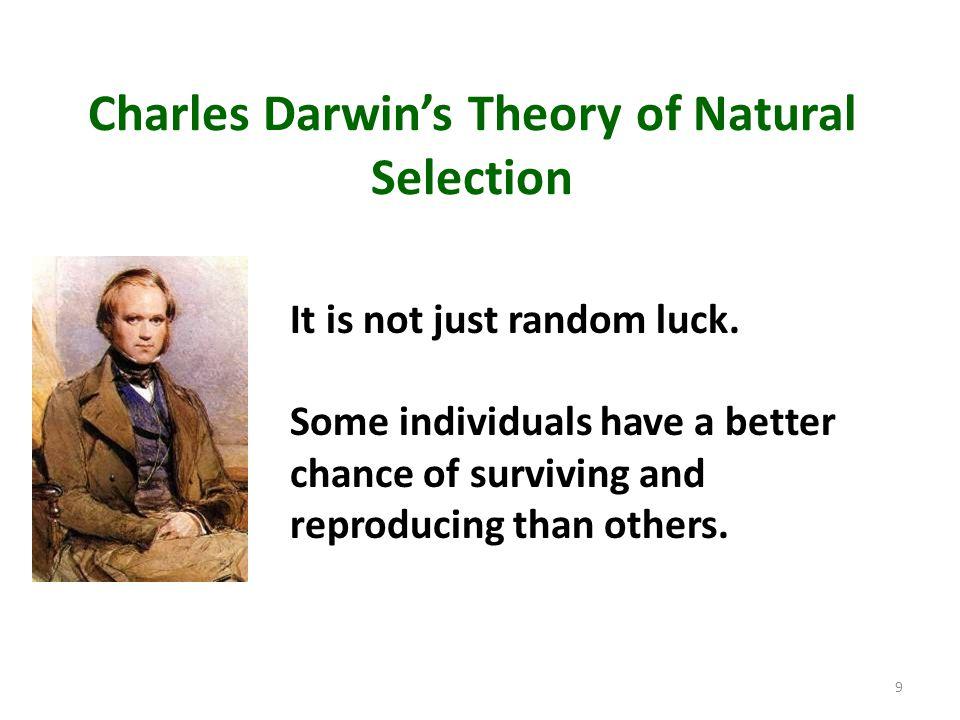 Charles Darwin's Theory of Natural Selection