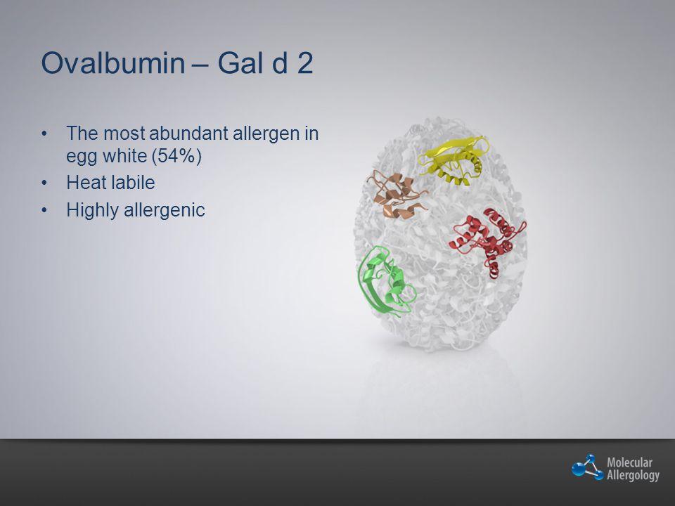Ovalbumin – Gal d 2 The most abundant allergen in egg white (54%)