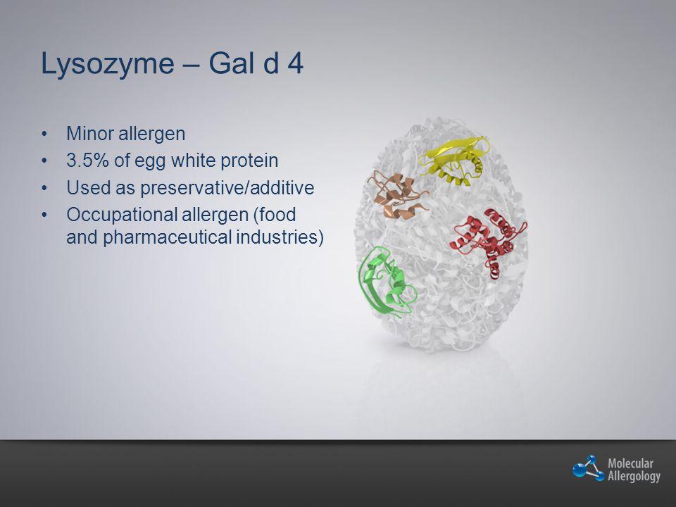 Lysozyme – Gal d 4 Minor allergen 3.5% of egg white protein