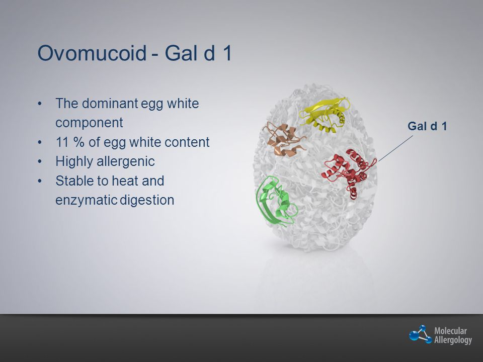 Ovomucoid - Gal d 1 The dominant egg white component