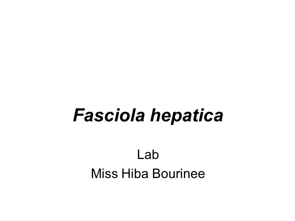 Fasciola hepatica Lab Miss Hiba Bourinee