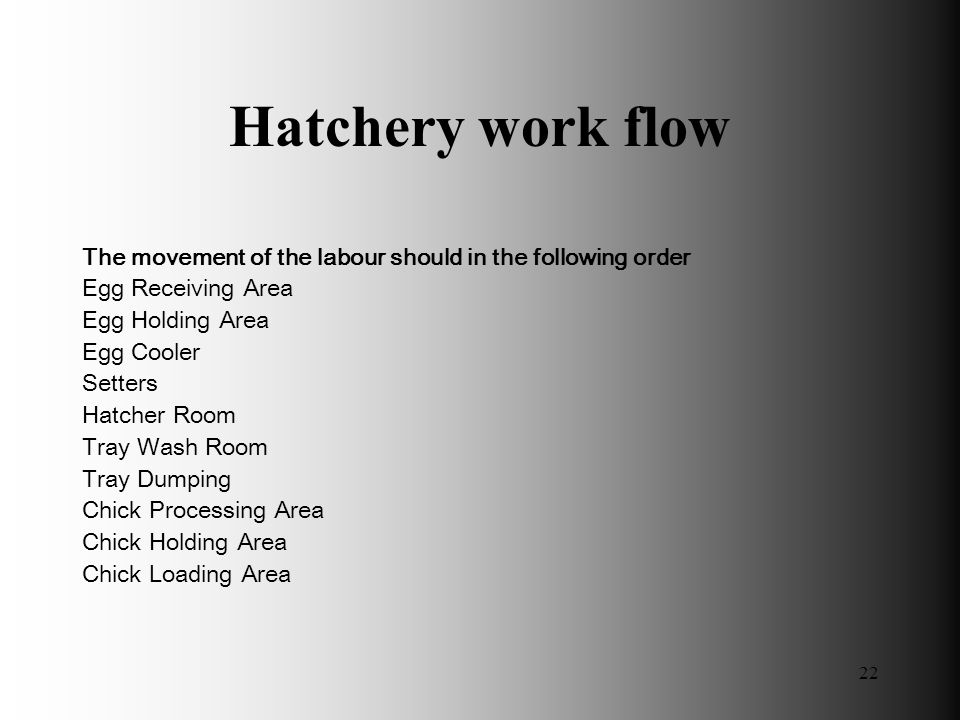 Hatchery work flow The movement of the labour should in the following order. Egg Receiving Area. Egg Holding Area.