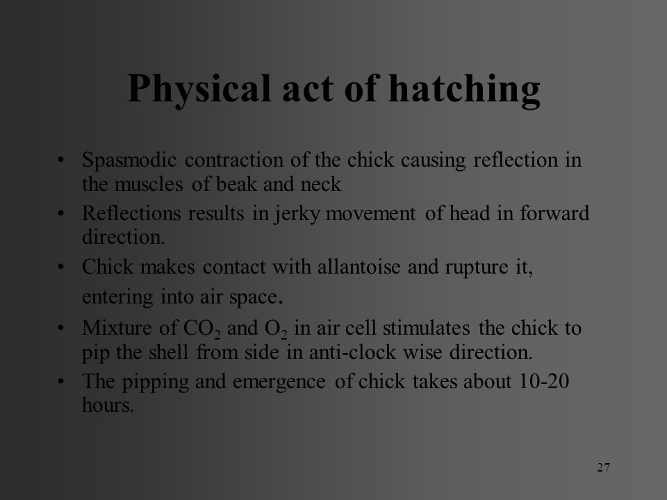 Physical act of hatching