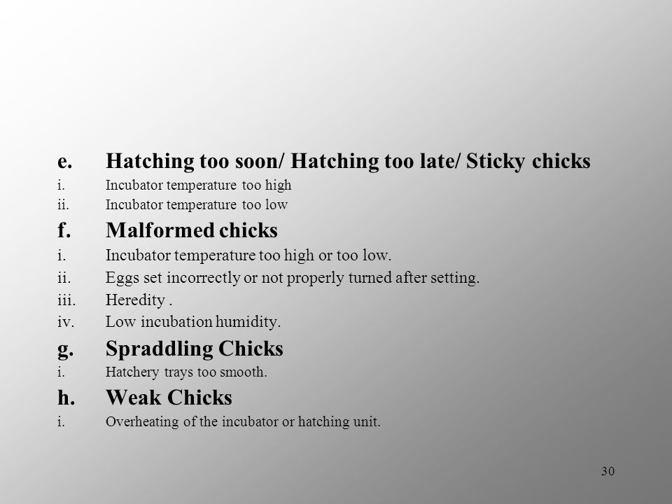 Hatching too soon/ Hatching too late/ Sticky chicks Malformed chicks