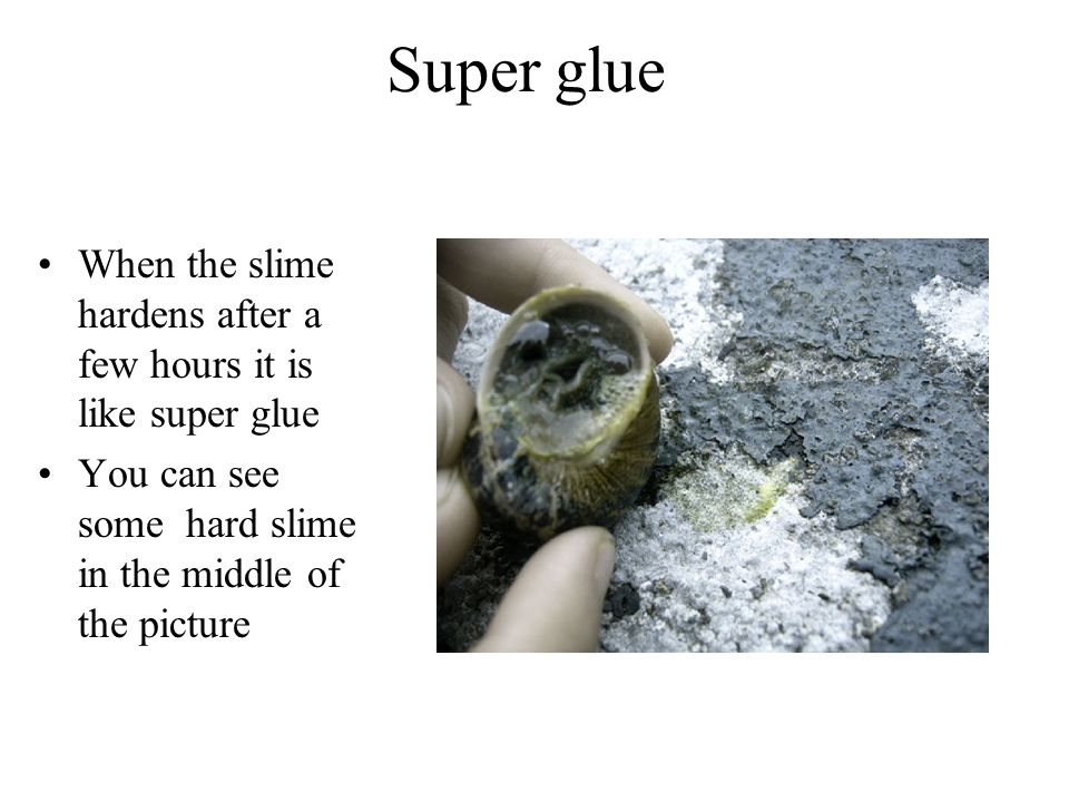 Super glue When the slime hardens after a few hours it is like super glue.