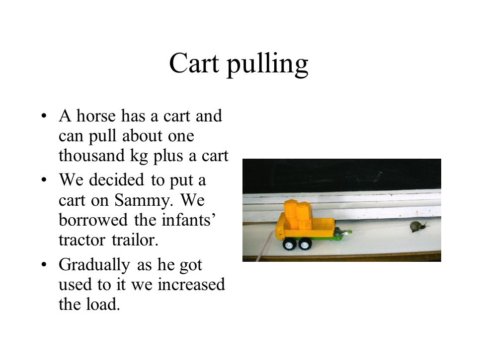 Cart pulling A horse has a cart and can pull about one thousand kg plus a cart.