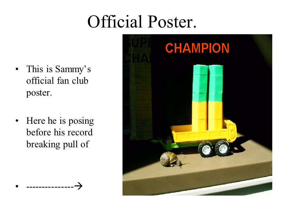 Official Poster. This is Sammy's official fan club poster.