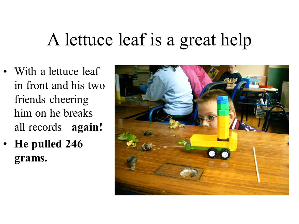 A lettuce leaf is a great help