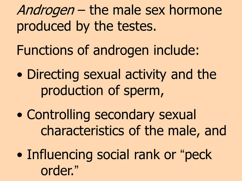 Androgen – the male sex hormone produced by the testes.
