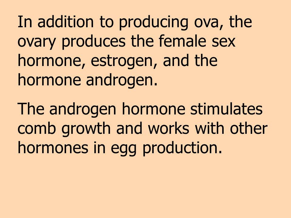 In addition to producing ova, the ovary produces the female sex hormone, estrogen, and the hormone androgen.