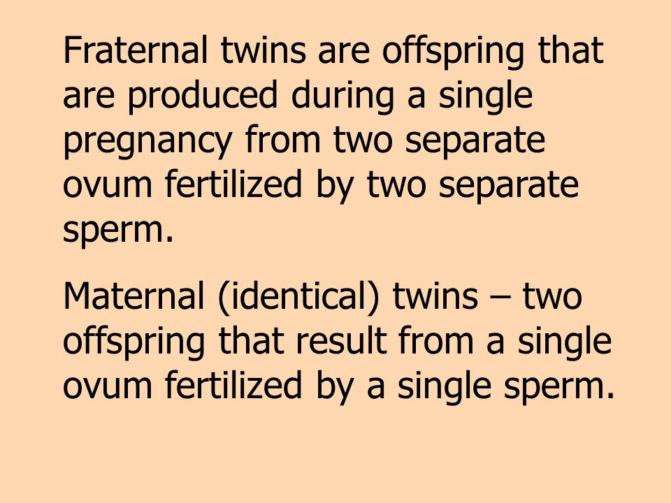 Fraternal twins are offspring that are produced during a single pregnancy from two separate ovum fertilized by two separate sperm.