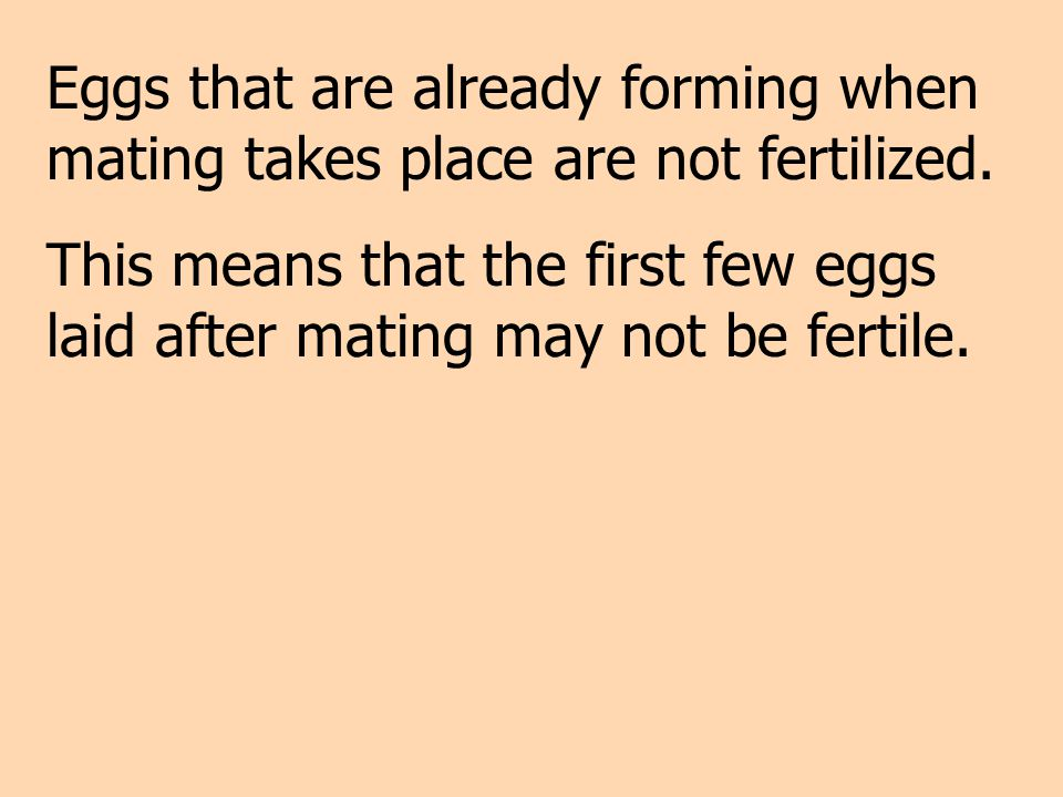 Eggs that are already forming when mating takes place are not fertilized.