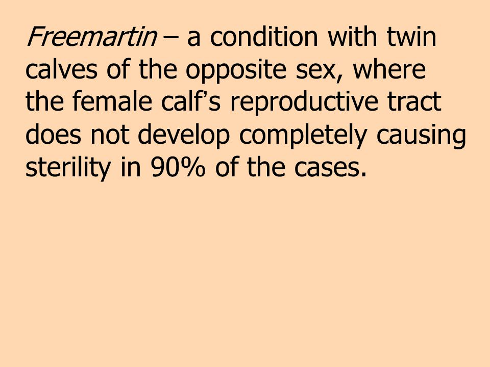 Freemartin – a condition with twin calves of the opposite sex, where the female calf's reproductive tract does not develop completely causing sterility in 90% of the cases.