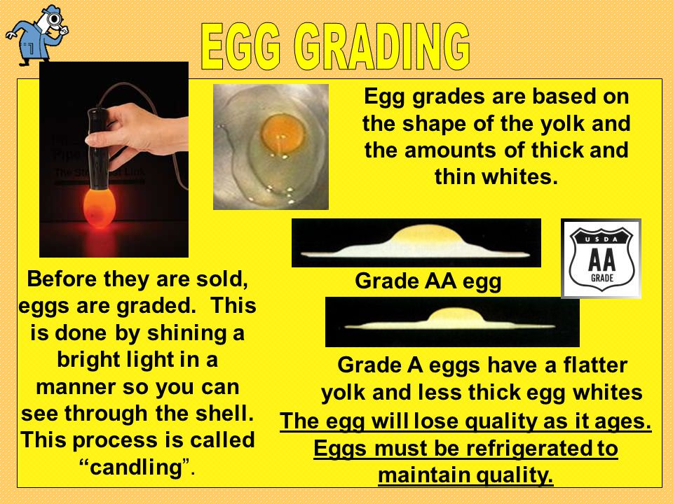 Grade A eggs have a flatter yolk and less thick egg whites