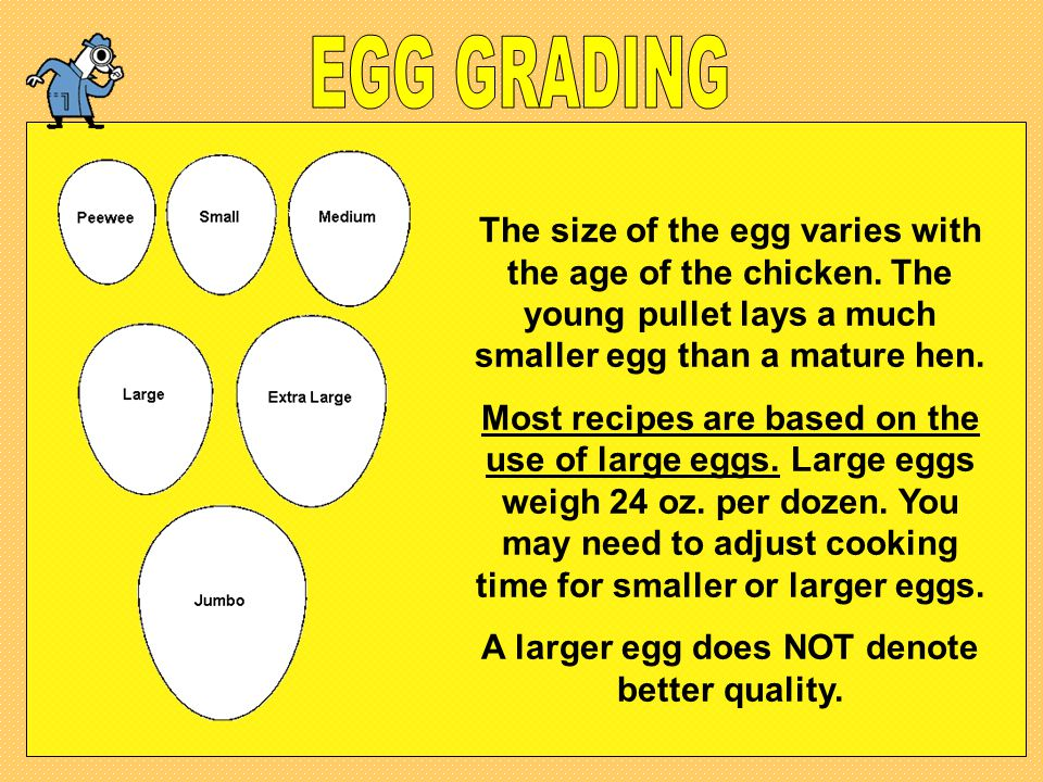 A larger egg does NOT denote better quality.