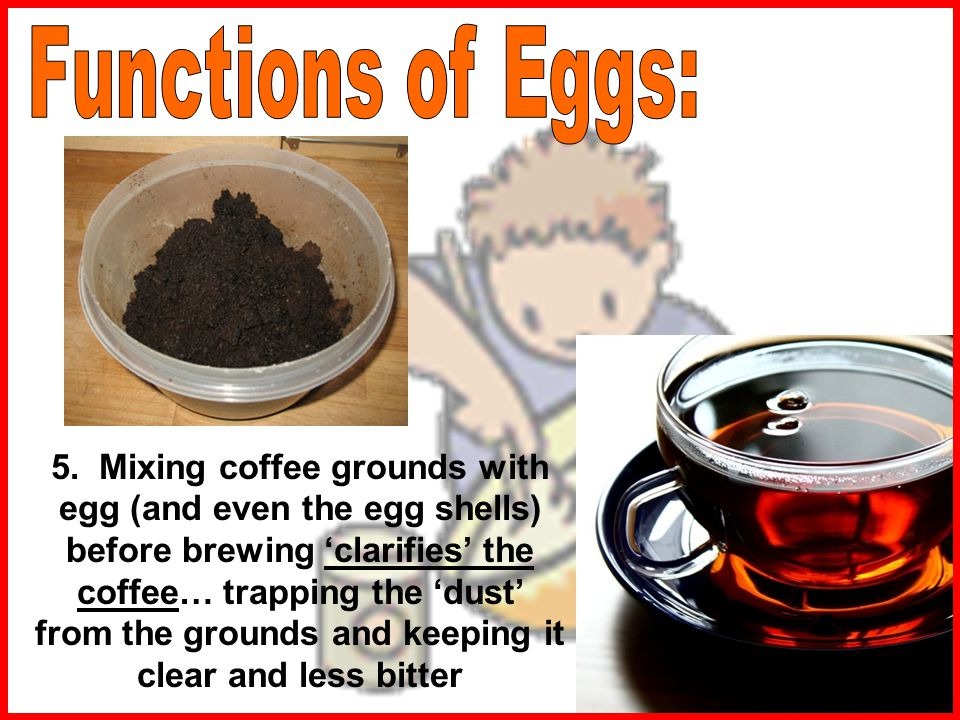Functions of Eggs: