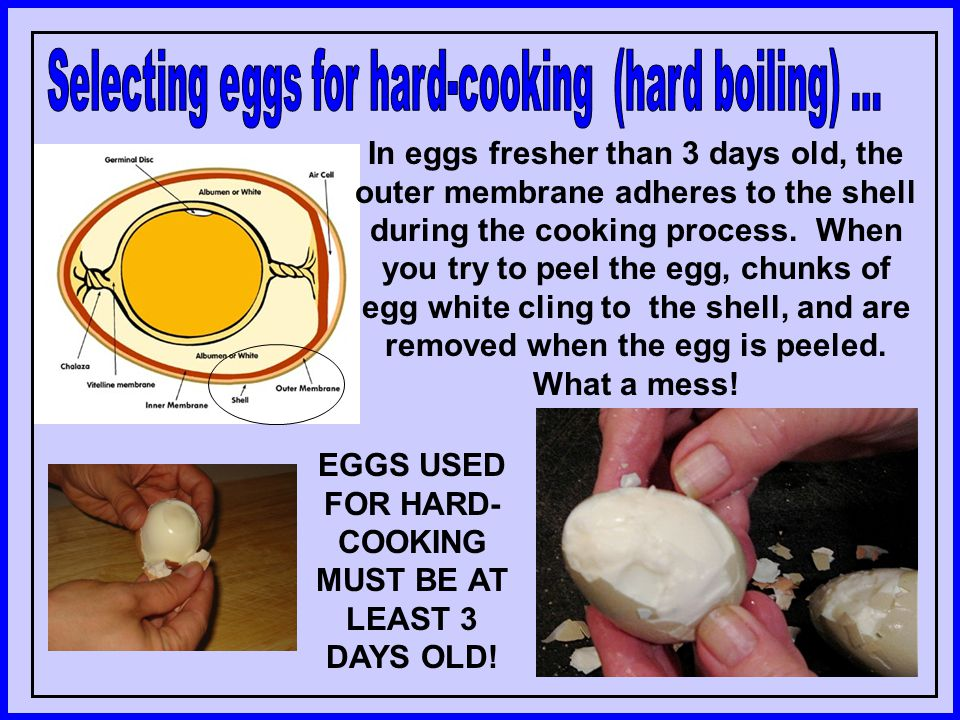 EGGS USED FOR HARD-COOKING MUST BE AT LEAST 3 DAYS OLD!