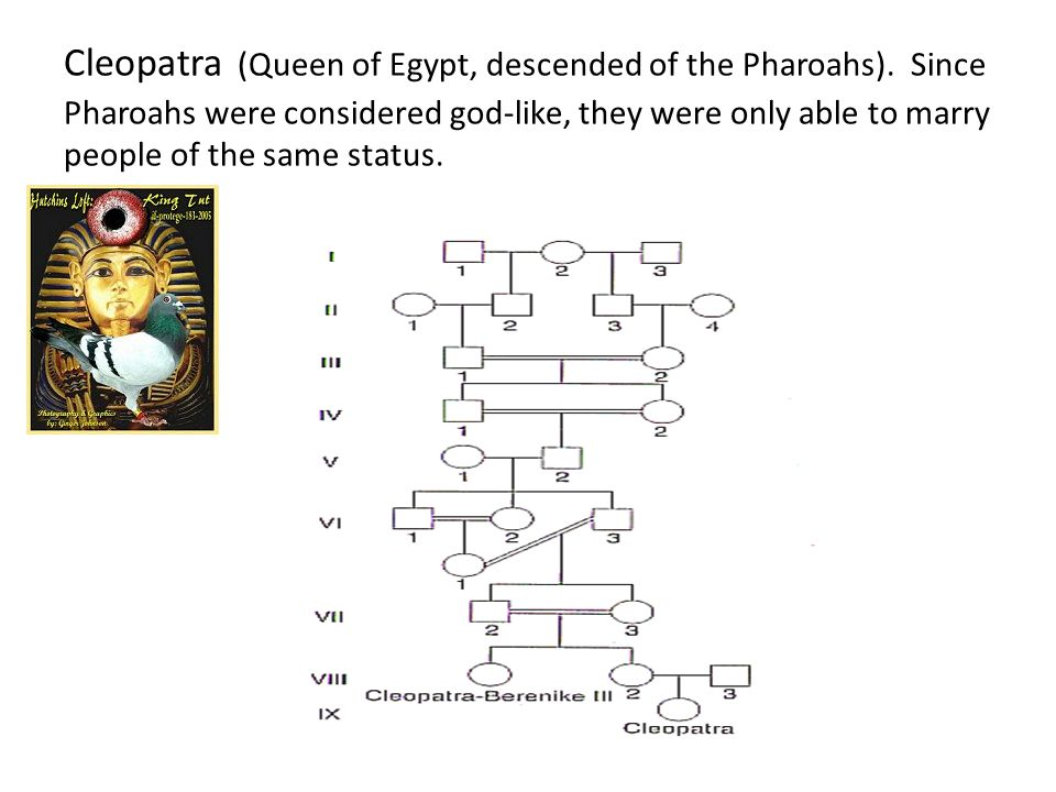 Cleopatra (Queen of Egypt, descended of the Pharoahs)