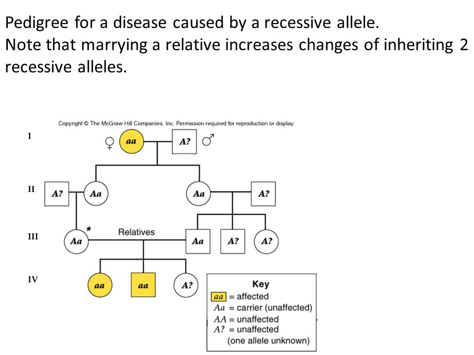 Pedigree for a disease caused by a recessive allele