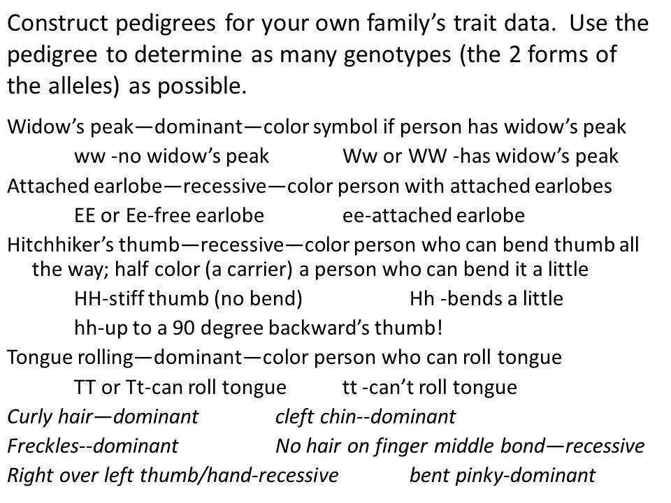 Construct pedigrees for your own family's trait data