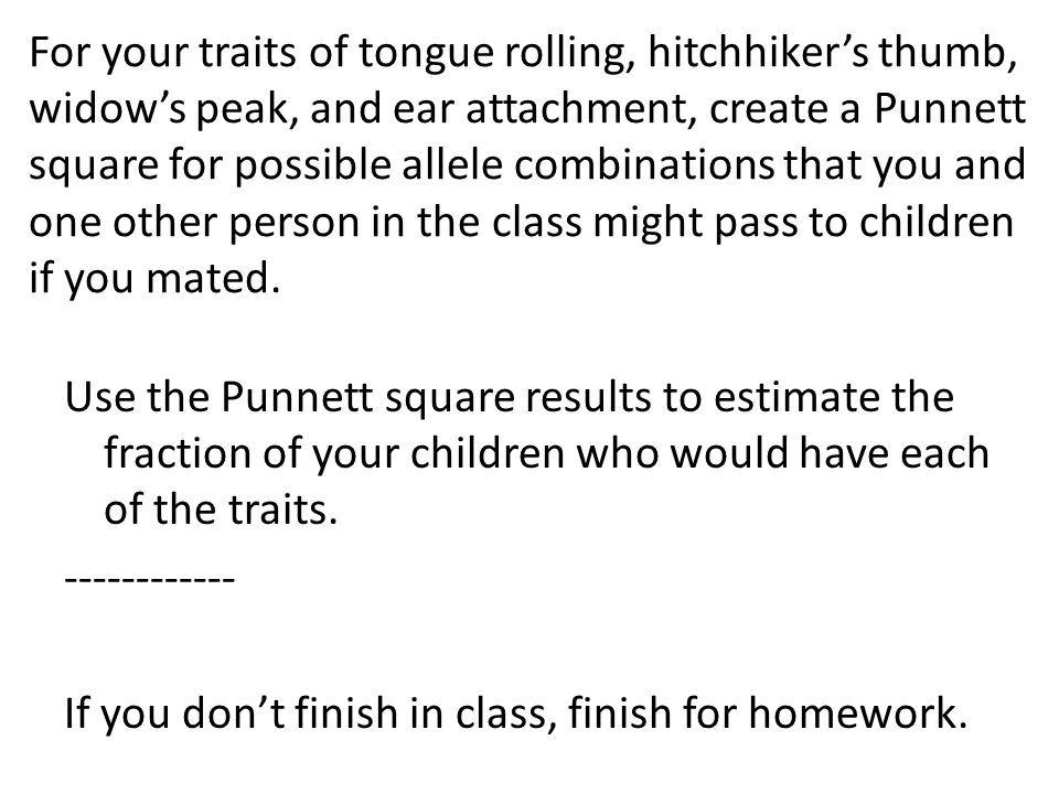 For your traits of tongue rolling, hitchhiker's thumb, widow's peak, and ear attachment, create a Punnett square for possible allele combinations that you and one other person in the class might pass to children if you mated.