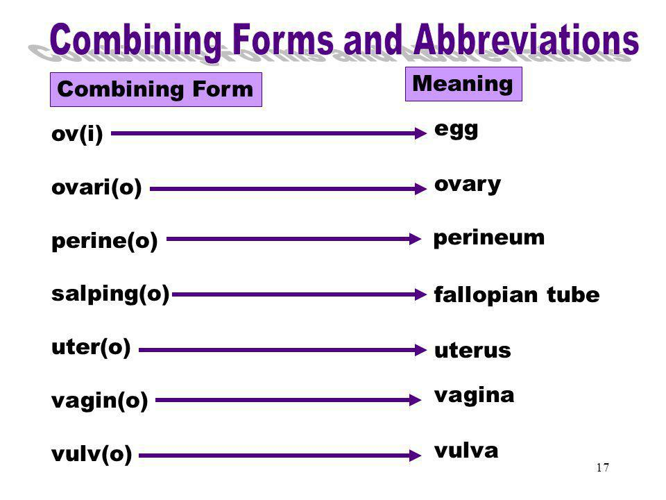 Combining Forms & Abbreviations (ov)