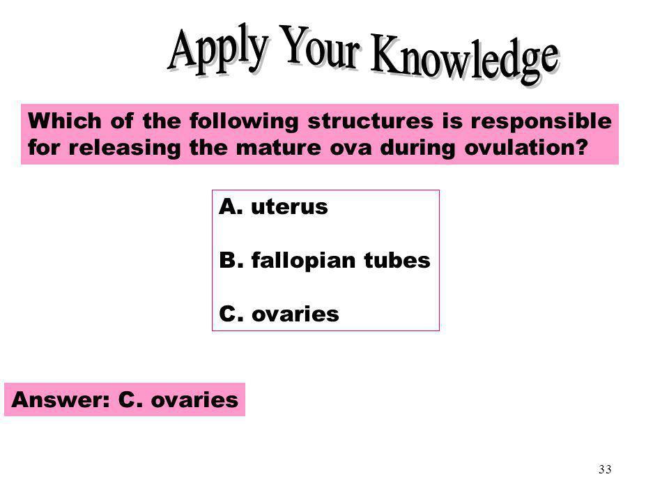 Apply Your Knowledge Apply Your Knowledge