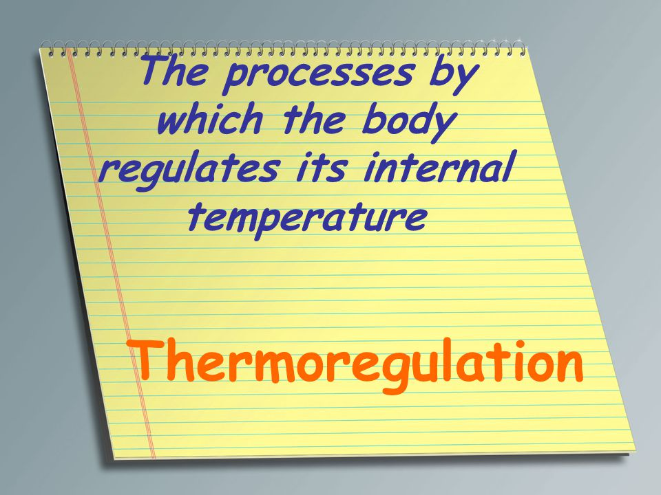 The processes by which the body regulates its internal temperature