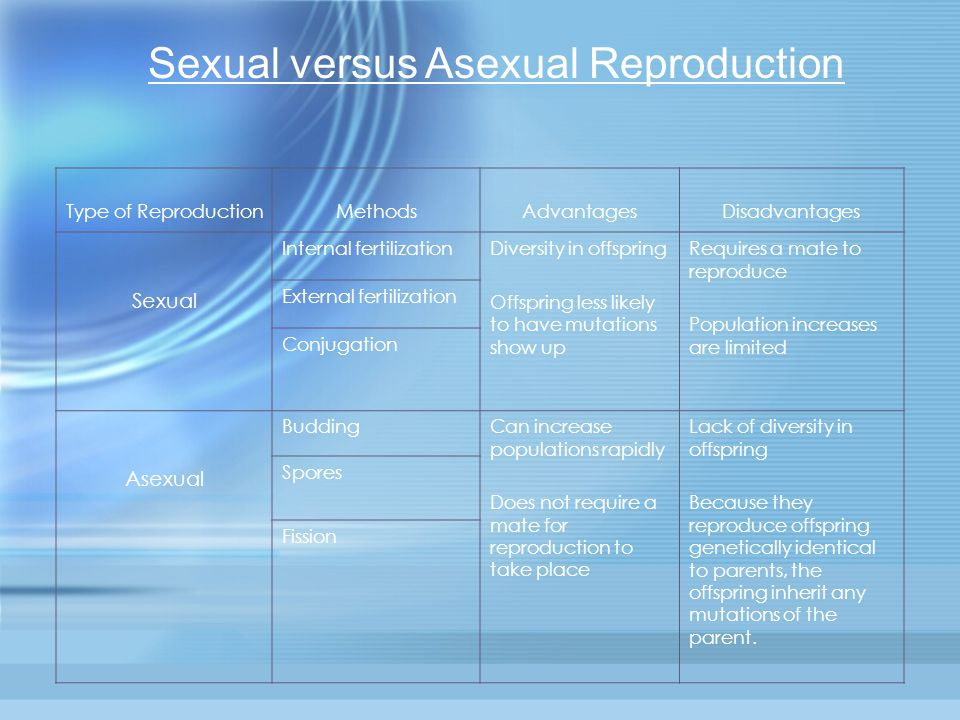 Sexual versus Asexual Reproduction - ppt download