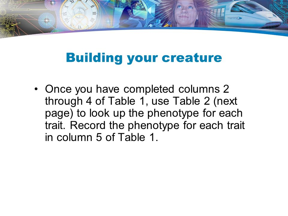Building your creature