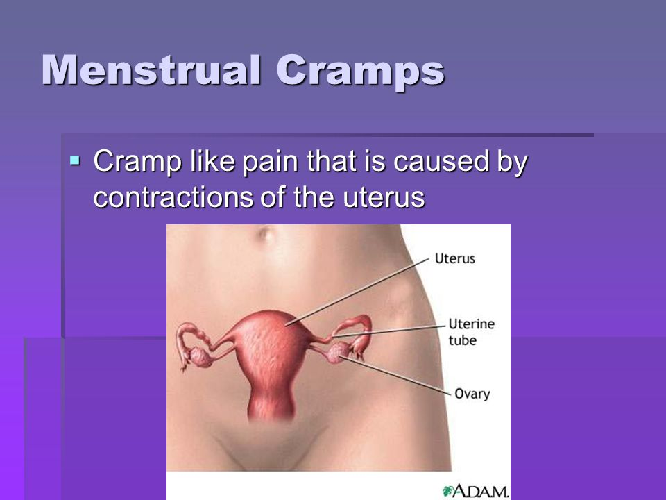 Menstrual Cramps Cramp like pain that is caused by contractions of the uterus