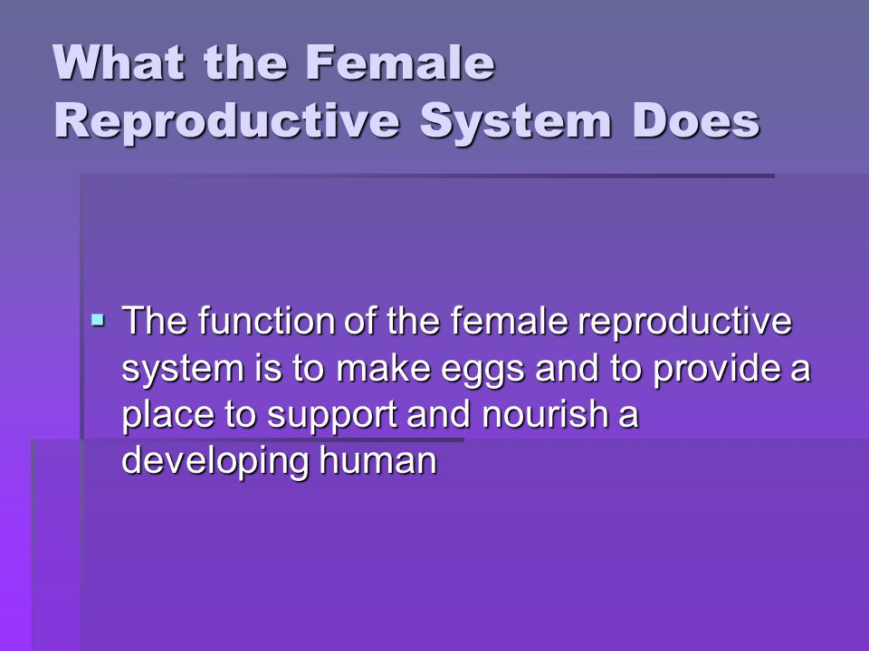 What the Female Reproductive System Does