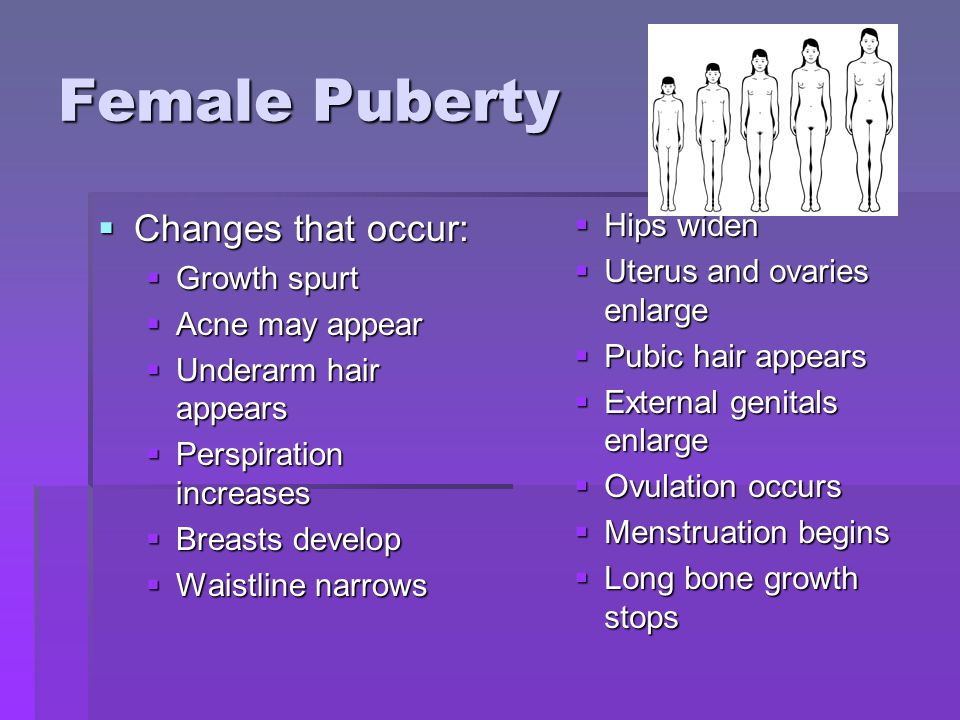 Female Puberty Changes that occur: Hips widen