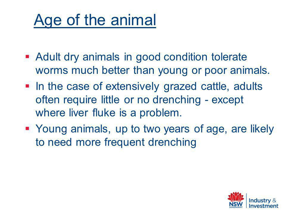 Age of the animal Adult dry animals in good condition tolerate worms much better than young or poor animals.