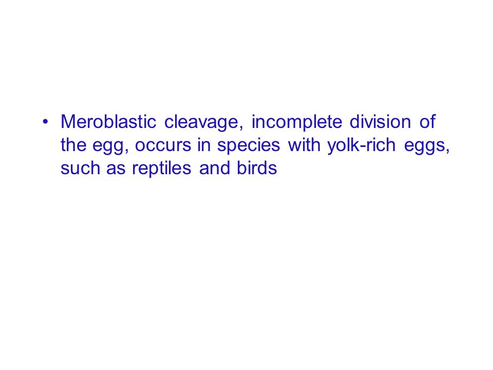 Meroblastic cleavage, incomplete division of the egg, occurs in species with yolk-rich eggs, such as reptiles and birds
