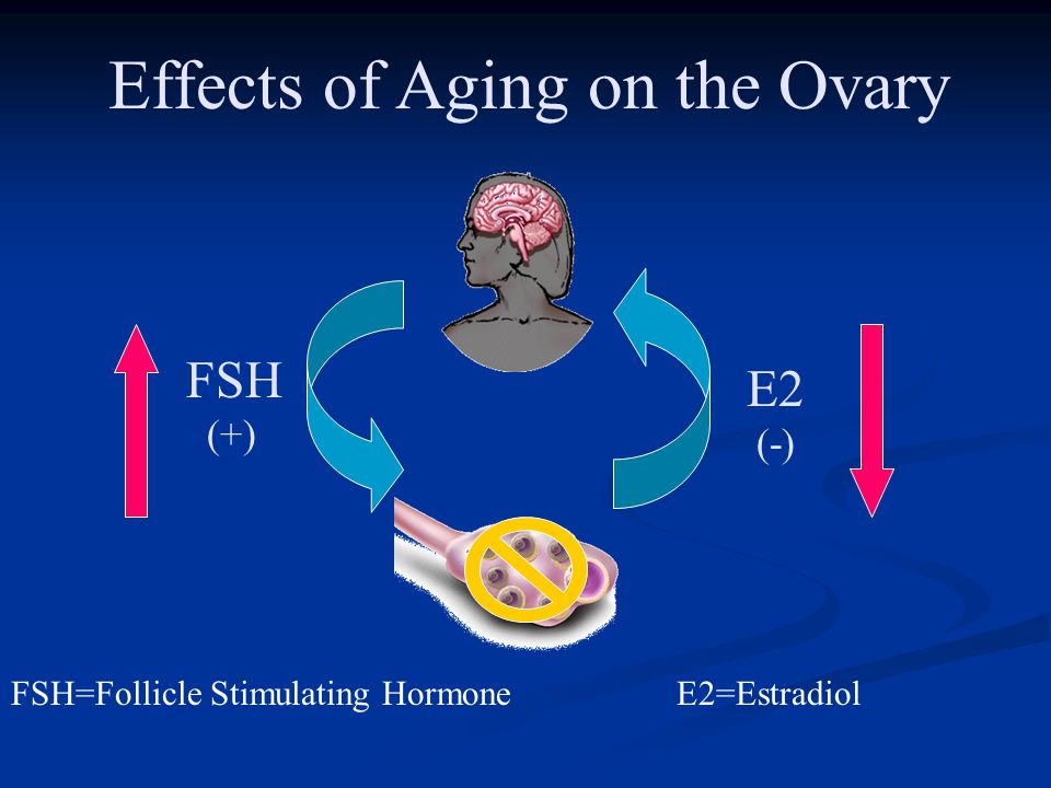 Effects of Aging on the Ovary