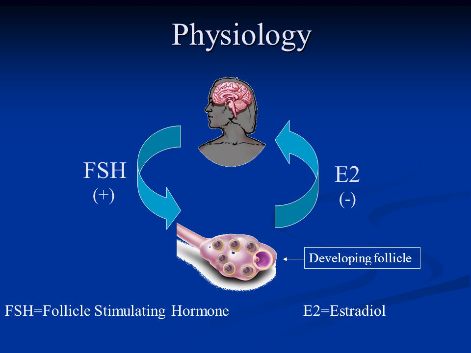Physiology FSH E2 (+) (-) FSH=Follicle Stimulating Hormone