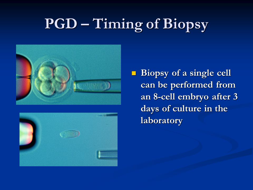 PGD – Timing of Biopsy Biopsy of a single cell can be performed from an 8-cell embryo after 3 days of culture in the laboratory.