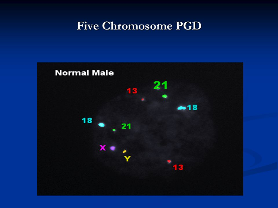 Five Chromosome PGD