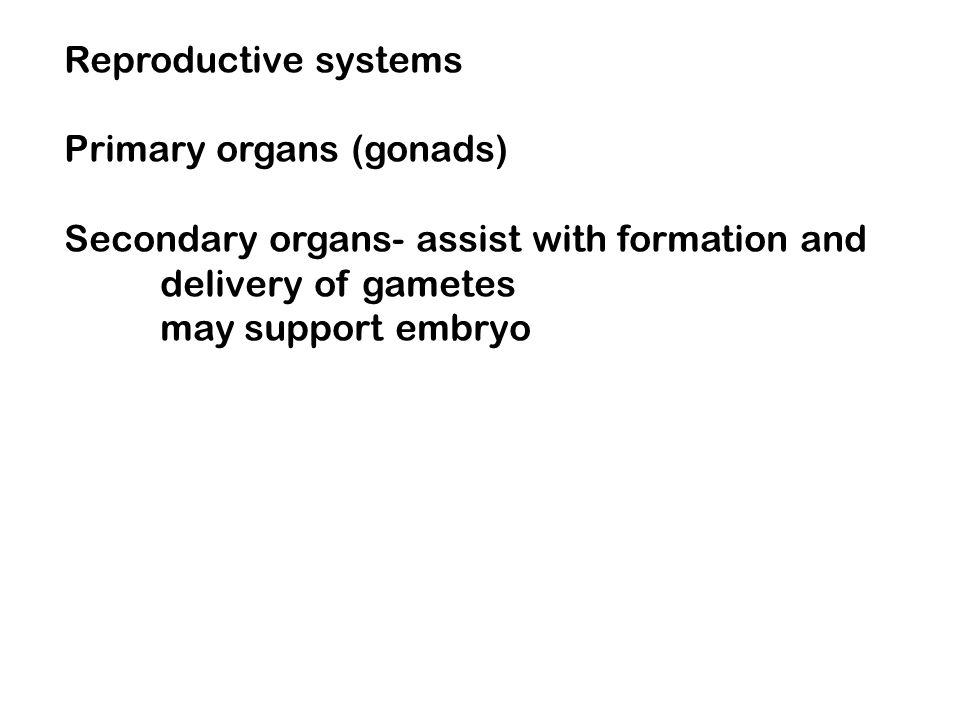 Reproductive systems Primary organs (gonads) Secondary organs- assist with formation and. delivery of gametes.