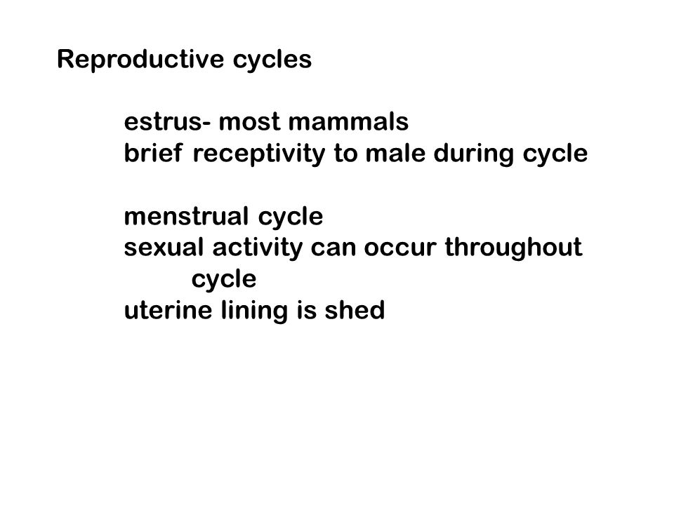Reproductive cycles estrus- most mammals. brief receptivity to male during cycle. menstrual cycle.